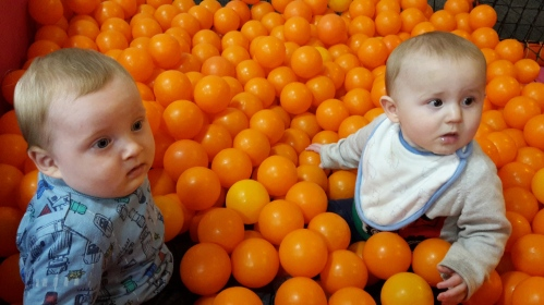 baby group, babies in ball pit