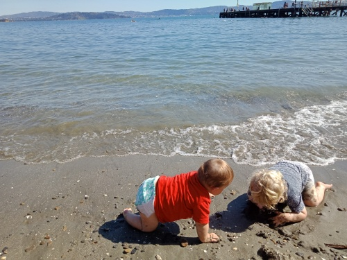 Days Bay Eastbourne is one of 8 excellent family friendly beaches in Wellington