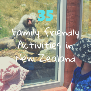 Baboons and toddlers at Wellington Zoo, one of 35 family friendly activities in New Zealand