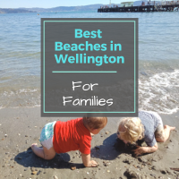 8 Family Friendly Beaches In Wellington