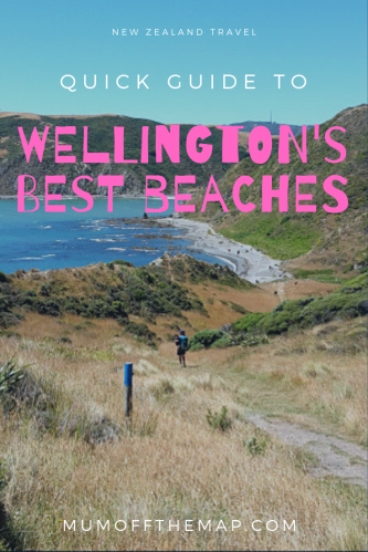 Cliff and beach hiking view, text Quick Guide to Wellingtons best beaches