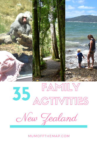 35 family Activities New Zealand, Zoo, Hiking, beach days